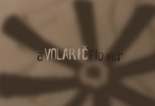 A Volaric Flower